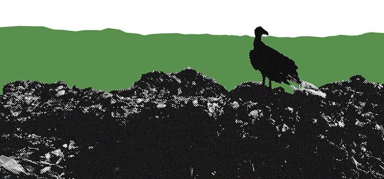 Como o Brasil pós-COVID-19 tratará os resíduos sólidos?
