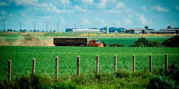 Concessão de rodovias vai melhorar escoamento da produção agrícola de MT